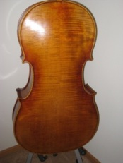 Cello Back