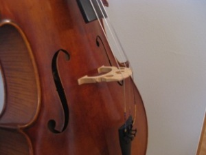 Cello Side